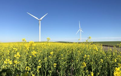 LETELmetrics Works with Wind Energy in Idaho